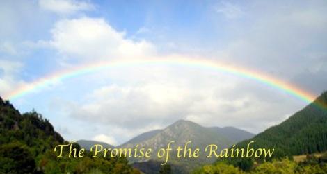 New Z Rainbow W