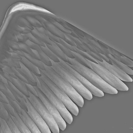 angelFallen